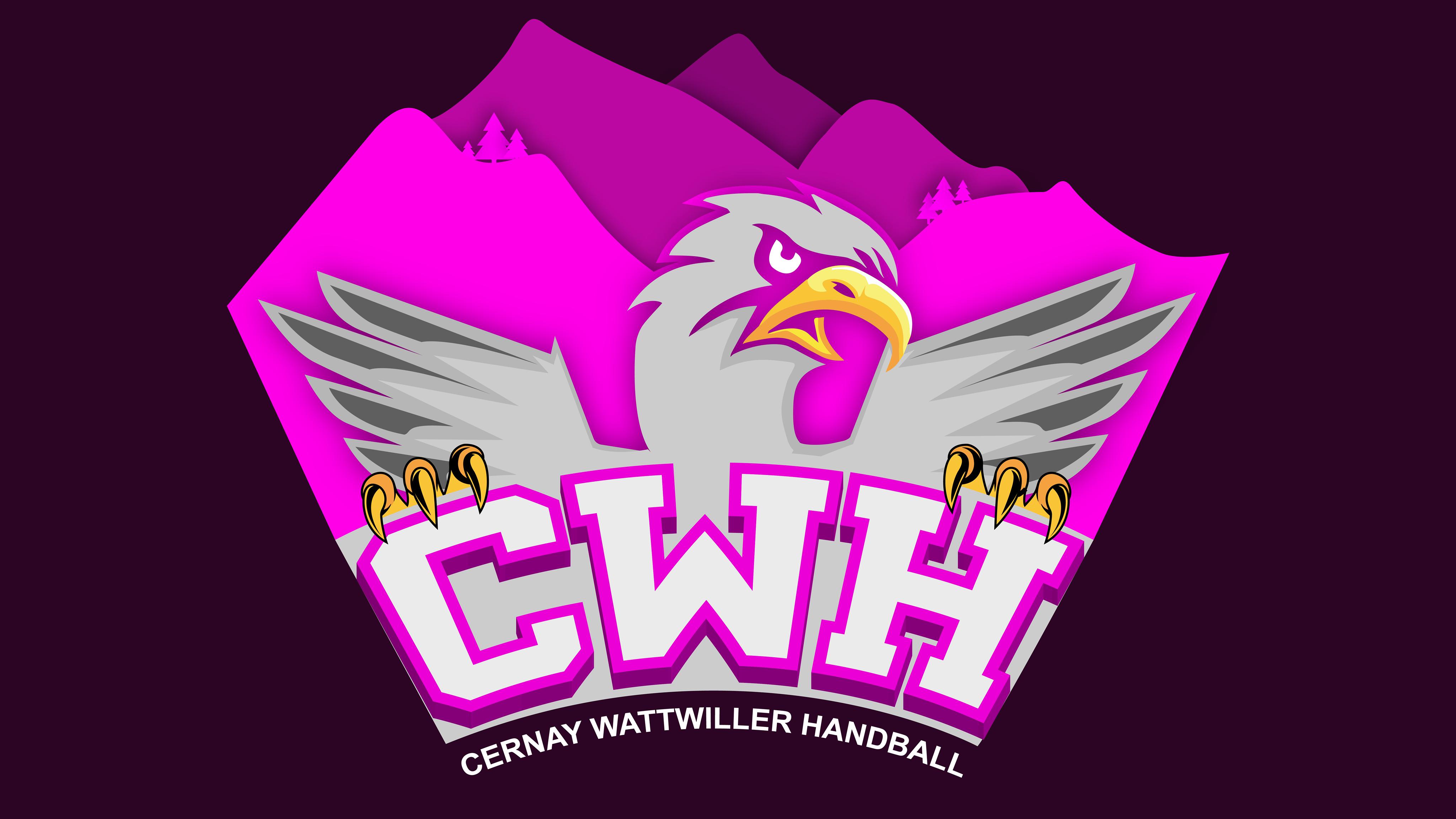 MONTFERMEIL HANDBALL VS CERNAY/WATTWILLER HANDBALL